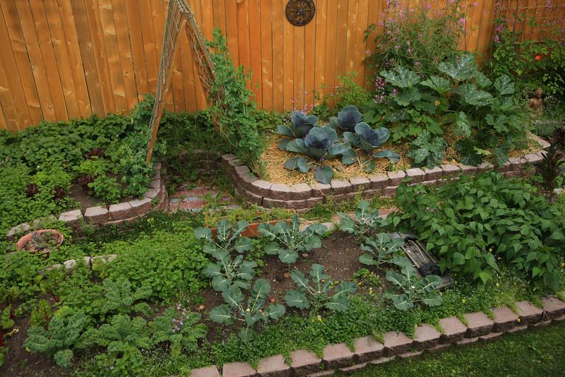 August 5, 2013.  Happy garden