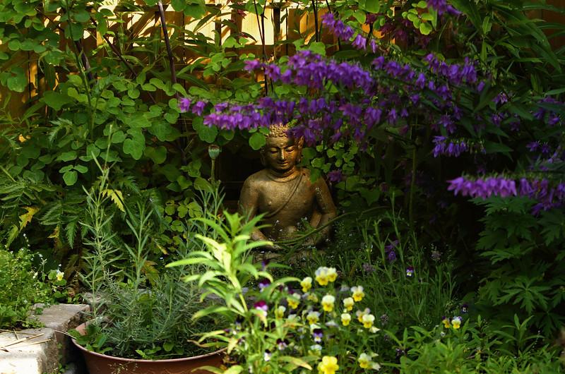 August 15, 2013.  Buddha's corner